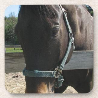 Dark Bay Thoroughbred Horse Set of Coasters