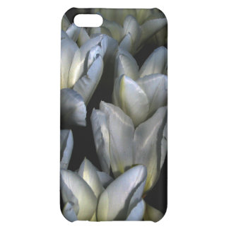 Dark Beauty iPhone 5C Cases