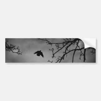 Dark Bird in Flight Bumper Sticker