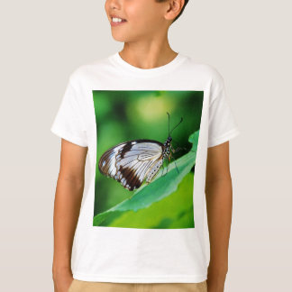 Dark Brown and Grey Butterfly T-Shirt