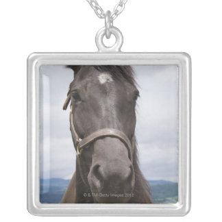 Dark Brown Horse Silver Plated Necklace