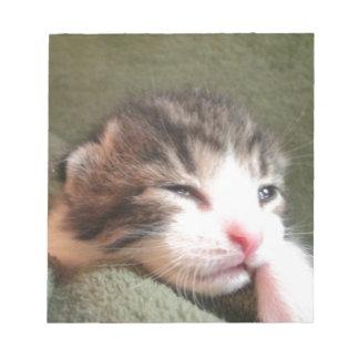 Dark Calico Kitten Notepad