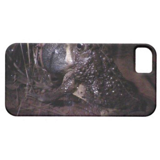 Dark Canyon Utah Aquatic Animals / Plants Frog iPhone 5 Cover