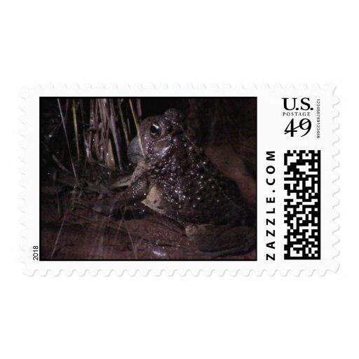 Dark Canyon Utah Aquatic Animals / Plants Frog Stamps