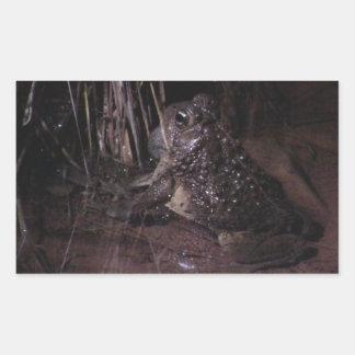 Dark Canyon Utah Aquatic Animals Plants Frog Rectangular Sticker