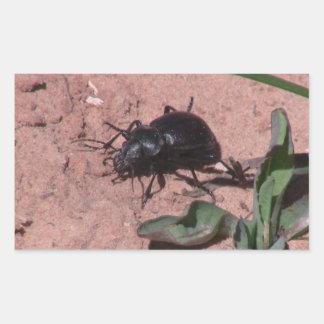 Dark Canyon Utah Insects Arachnids Rectangular Stickers