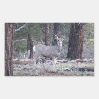 Dark Canyon Utah Mammals Deer Rectangle Stickers
