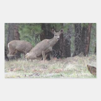 Dark Canyon Utah Mammals Deer Rectangular Sticker