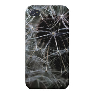 Dark Dandelion iPhone 4 Glossy Finish Case