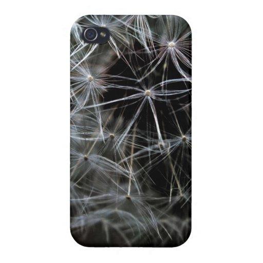 Dark Dandelion iPhone 4 Glossy Finish Case iPhone 4/4S Cover