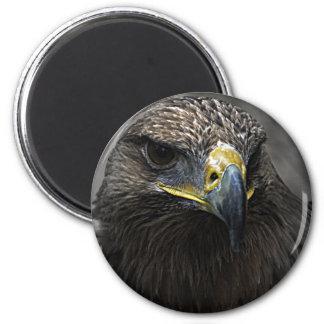 Dark Eagle 2 Inch Round Magnet
