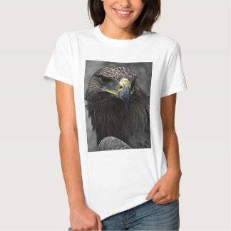 Dark Eagle Tee Shirt