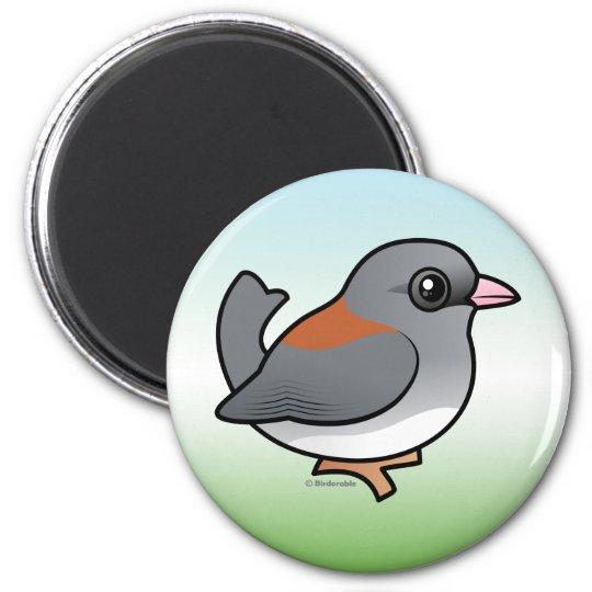 Dark-eyed Junco (gray-headed) Magnet