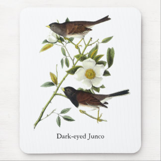 Dark-eyed Junco - John James Audubon Mouse Pad