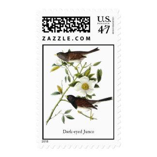 Dark-eyed Junco - John James Audubon Postage