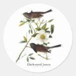 Dark-eyed Junco - John James Audubon Round Stickers