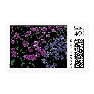 Dark Floral Postage Stamp