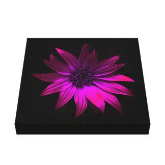 Dark Flower - Pink Canvas Print