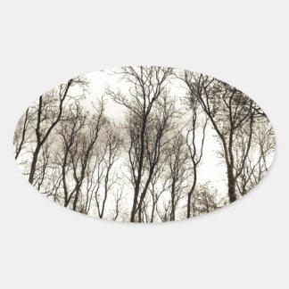 Dark forest oval sticker
