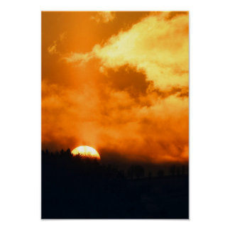 Dark Forest Sunset Bright Evening Spring Sky Poster