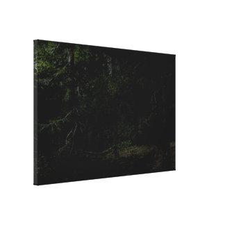 Dark Forrest Digital Painting Canvas Print