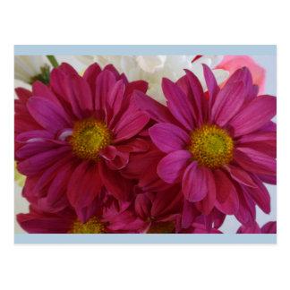 Dark Fuchsia Flowers Postcard