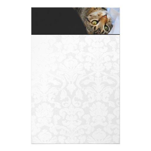 Dark Gray & Adorable Kitten White Stationery