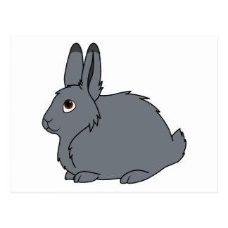 Dark Gray Arctic Hare Postcard
