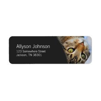 Dark Gray & Tabby Cat Address Labels