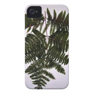 Dark Green Fern Branch iPhone 4 Cases