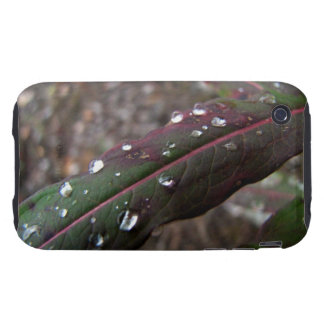 Dark Green Fireweed Leaf with Water Droplets iPhone 3 Tough Cover