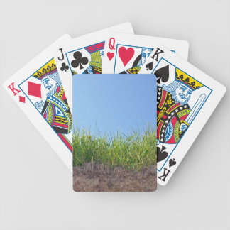 Dark green Grass on dry soil Bicycle Playing Cards