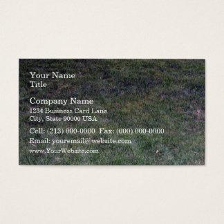 Dark Green Grassy Background Business Card