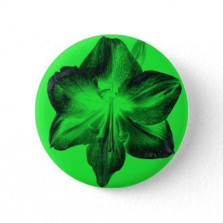 Dark Green on Light Green Amaryllis zazzle_button