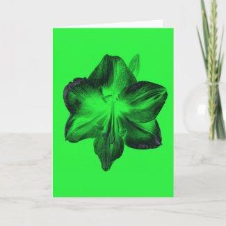 Dark Green on Light Green Amaryllis zazzle_card