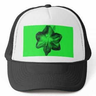 Dark Green on Light Green Amaryllis zazzle_hat