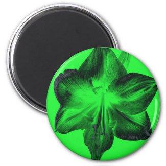 Dark Green on Light Green Amaryllis zazzle_magnet