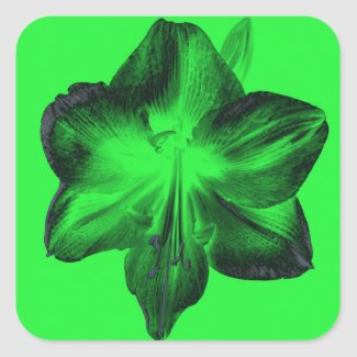 Dark Green on Light Green Amaryllis zazzle_sticker