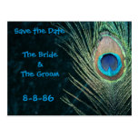 Dark Green Peacock Feathers Save the Date Postcards