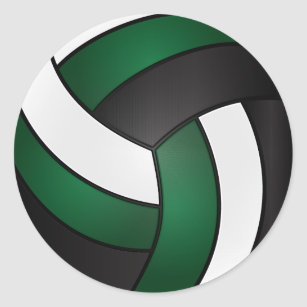 Image result for volleyball picture green and white