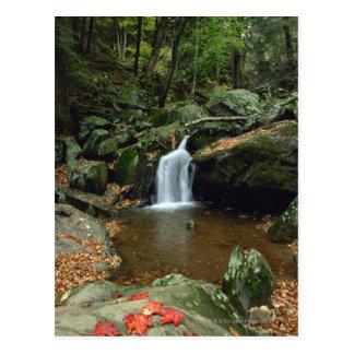 Dark Hallow Falls in autumn , Shenandoah Postcard