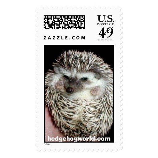 dark hedgehog stamp