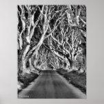 Dark Hedges B&W Print