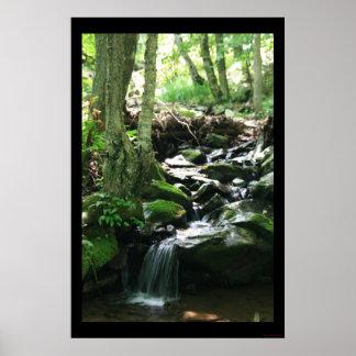Dark Hollow Falls Print #4836