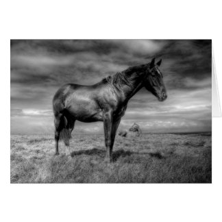 Dark Horse Arising Card