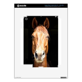 Dark Horse iPad 3 Decal