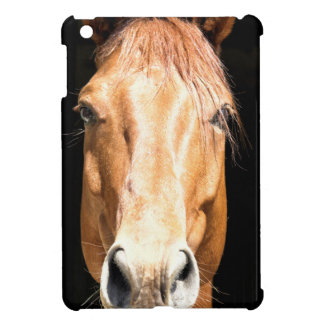 Dark Horse iPad Mini Cover