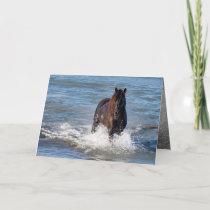 Dark Horse Runs in the Water Greeting Card
