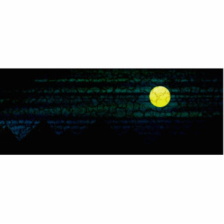 Dark Night Full Moon Photo Sculpture