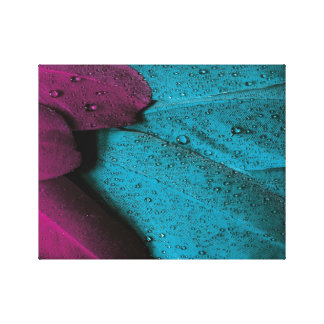 Dark Orchid and Teal Plumage Stretched Canvas Print